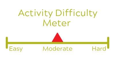 activitymeterlight-4