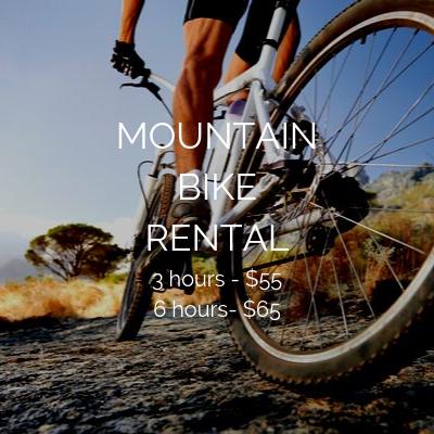 Copy of mountainbikerental