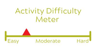 activitymeterlight-3